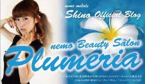 モデルになれる方法教えます!nemo社長本多利也(ほんだとしや)のニーモパパブログ-shinoスキン
