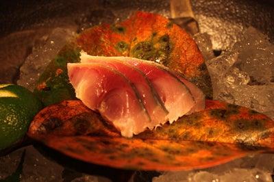 北海道より直送の寿司。堺筋本町駅徒歩1分 おたる栄六すし 大阪<br />