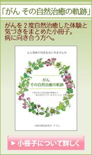 癌の体験談『がん、その自然治癒の軌跡』小冊子。2度のがんの自然治癒の体験と治療方法の取り組みについてまとめました。病と向き合う方へぜひ。