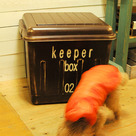 keeper box に新デザイン。。。:Dの記事より