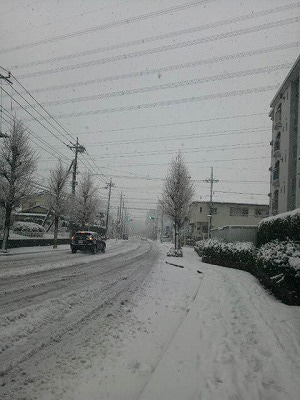 広野ゆうなのフーテンひぐらし-雪国