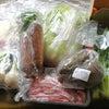 大地を救う会のオーガニック野菜 お試しセット980円の画像