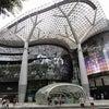 シンガポールからの便り PartⅠの画像