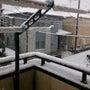 なんじゃこの雪は(風…