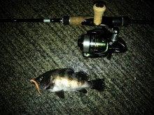 釣り具のタイム「今日のちょっとした話」