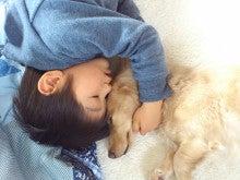 ★ココア兄ちゃんと僕☆