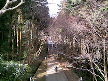 桂米紫のブログ-090214_180127.JPG