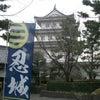 忍城(おしじょう)を見てきましたの画像