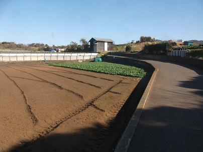 農業トータルコーディネーター イノウエ農商事のブログ-01211