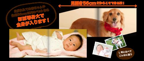 雄太の母さんのブログ