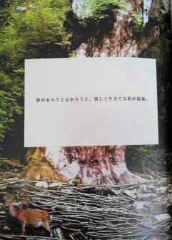 M-sea日誌