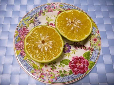 Jr.野菜ソムリエHiromiのグルメblog♪
