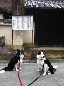$日本生菌研究所のブログ