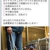 緊急!ミニピン男の子が兵庫県で迷子です。拡散希望の画像