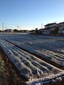 あつの農業への道-image