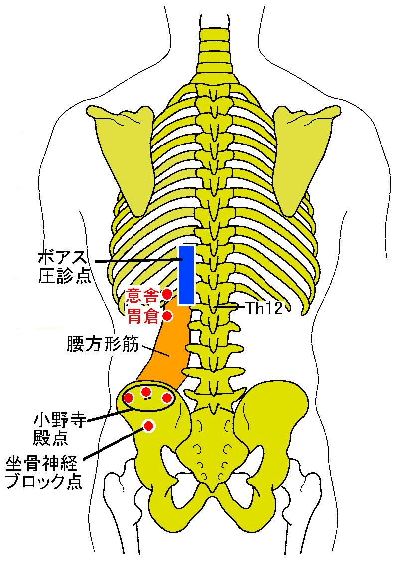 左 首 痛み の 肩 から にかけて