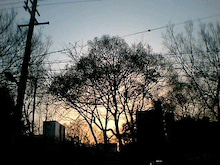 桂米紫のブログ-福島の夕日.jpg