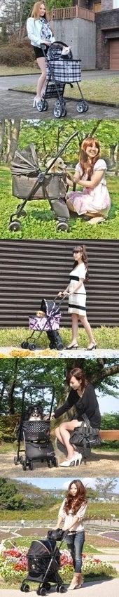 Caninange-シャンアンジェ サイドバナー