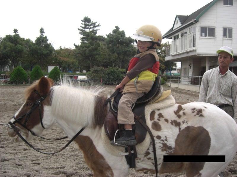 マイホーム探しの便利帳-武庫之荘乗馬クラブ