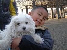 Hessale for Poochie& WAN WALKING Program わんことヘルスコミュニティ-ワンウォーキング 航空公園 20130203