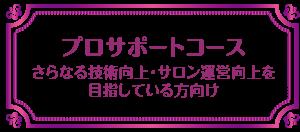 $Vivienne Waxing School【大阪・南堀江】ブラジリアンワックス スクール-プロサポートコース