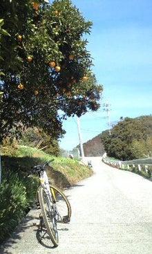 たっちんの自転車ブログ Powered by Ameba-CA3A0489-0001.JPG