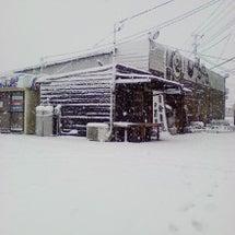 大雪でたまご屋ピンチ…