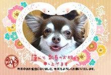 *ショコラ日和*