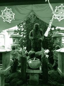 ◆ cinemazoo-法善寺
