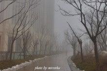 中国大連生活・観光旅行ニュース**-大連の春節の様子