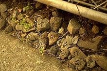 カケラバンクオフィシャルブログ「先の見えないこの時代で」Powered by Ameba-20130216a