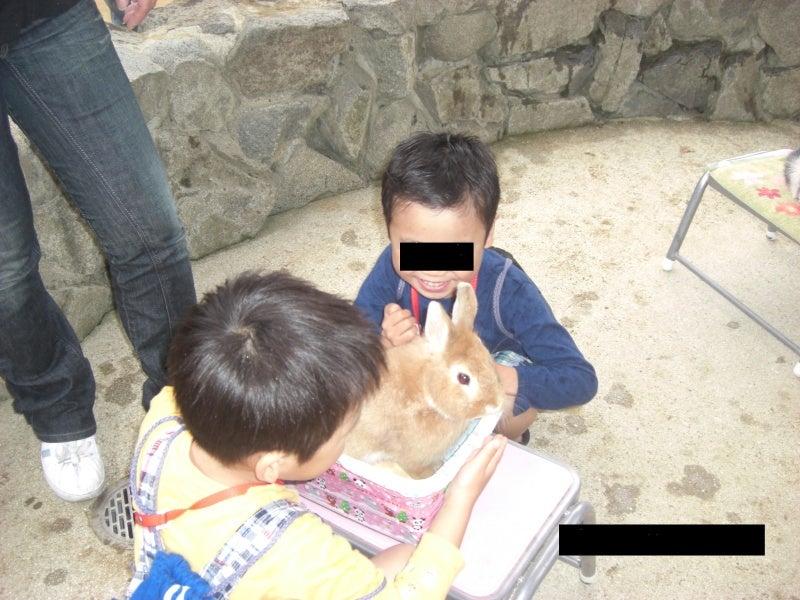 マイホーム探しの便利帳-神戸市立 王子動物園
