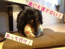 $寅次郎心の放浪記-phonto.jpg