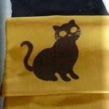 黒猫親子の名古屋帯