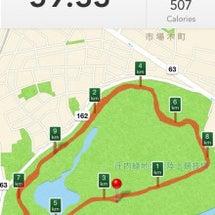 マラソントレーニング…