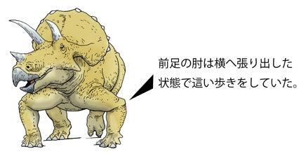 川崎悟司 オフィシャルブログ 古世界の住人 Powered by Ameba-トリケラトプス旧復元