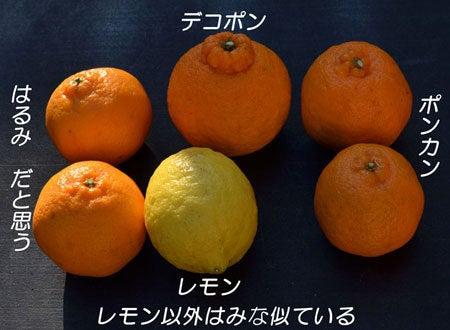 にわかFarmer-kannkiturui-1