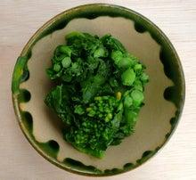 一日一品江戸料理-菜の花浸し物1
