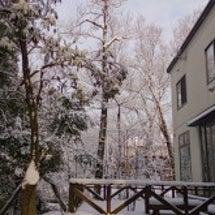 また今朝も雪またじ
