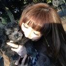 Dog run&Cafe.の記事より