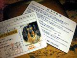 $ペット住民票のJustice Pet Town-top_sss005