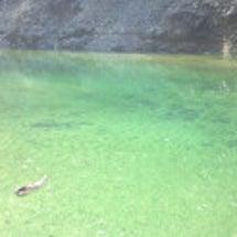 池原初釣行