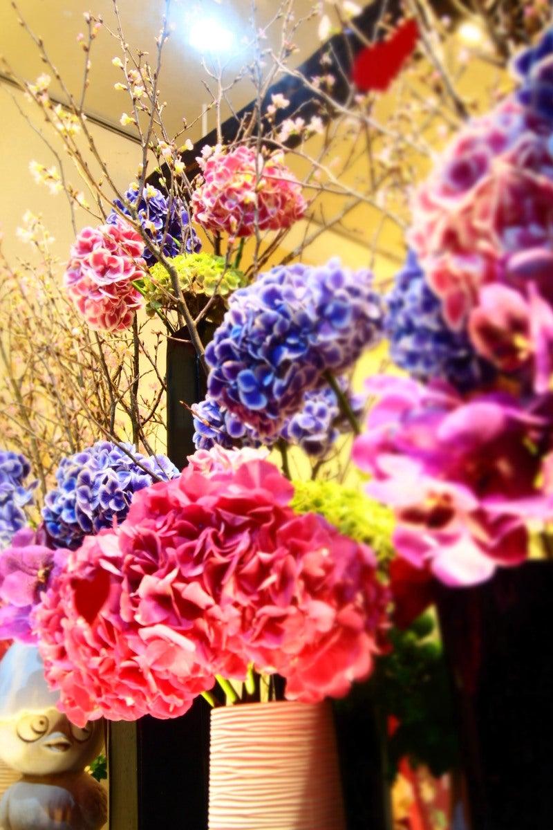 kirei flower