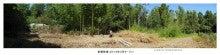 第2養蜂場予定地伐採途中