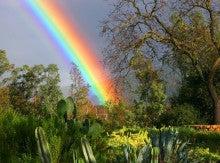 $ハワイの神秘マナ・カード、守護エンジェル、3分で心のブロック解除、波動調整 = 心を軽くする スピリチュアルセラピスト月丸虹呼-素敵な虹