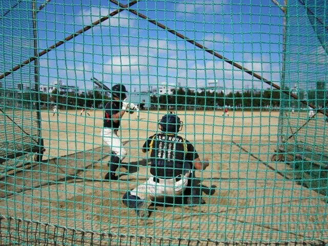 部 掲示板 学院 野球 聖光