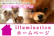http://illumination-pome.com/