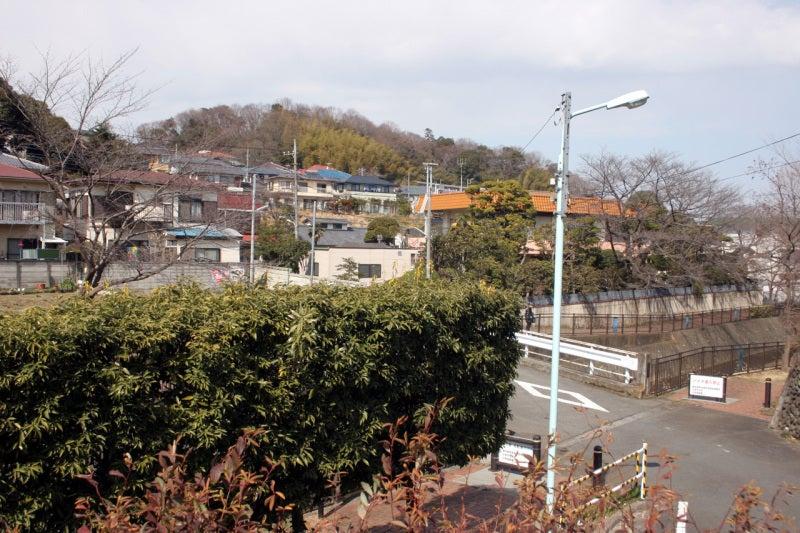 高幡城/遠景