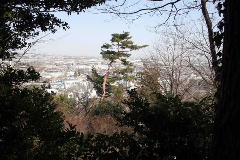 高幡城/本丸からの眺め