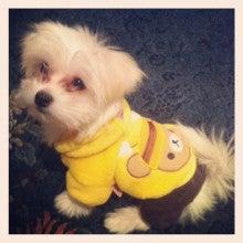 sweetloliのブログ